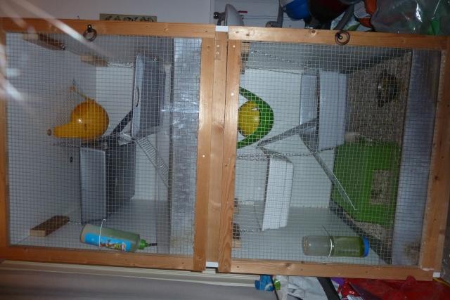 Cages de construction maison à vendre Ensemb11