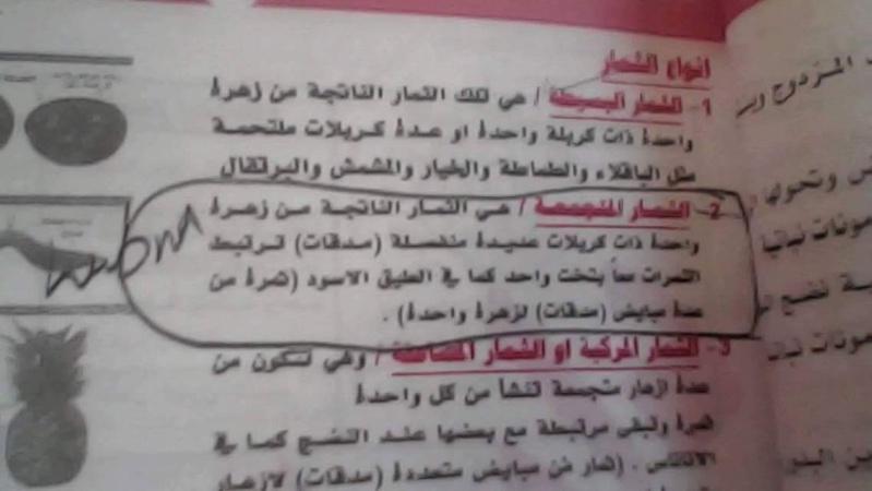 الأجوبة النموذجية لامتحان الأحياء للسادس العلمى فى العراق 2016 الدور الأول 215