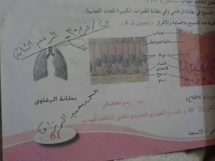 الأجوبة النموذجية لامتحان الأحياء للسادس العلمى فى العراق 2016 الدور الأول 713