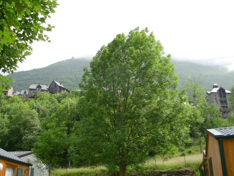 Airotel des Pyrénées à Esquieze-Sere Vacanc11