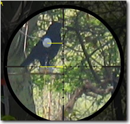 """Etablir une table MilDots """"deux en un"""" pour le Hunter Field Target (HFT) Exerci10"""