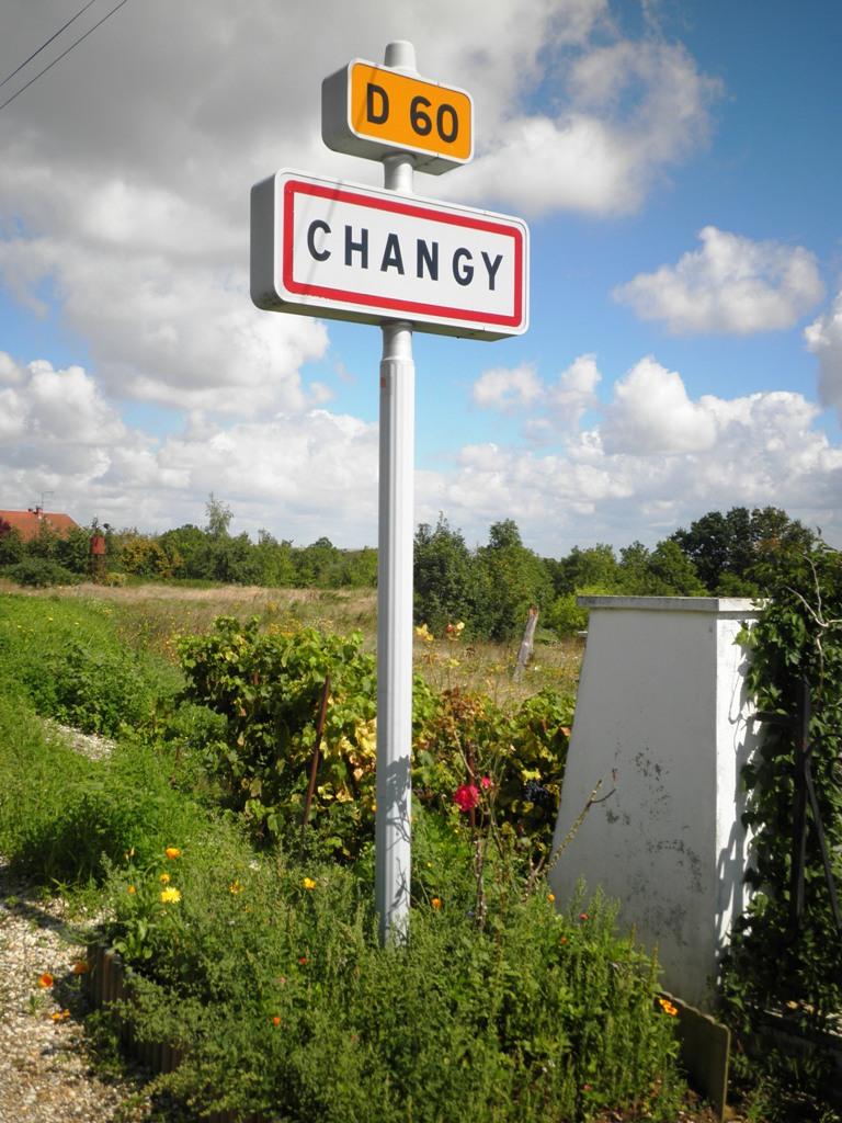 CHANGY P8310010