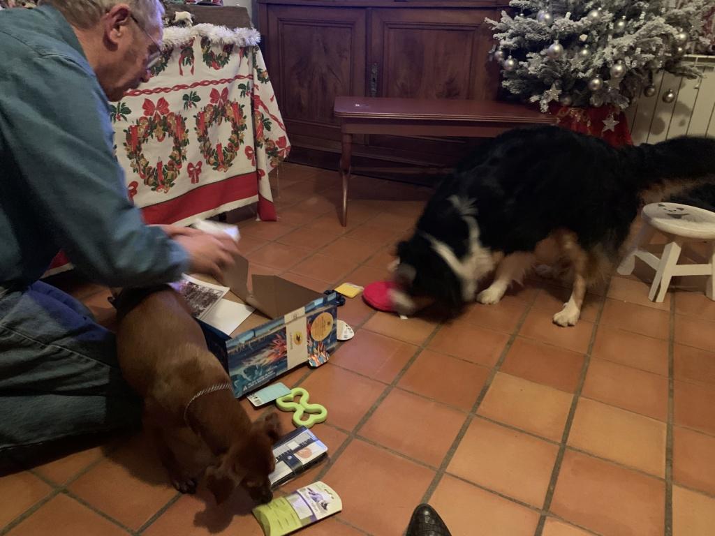 Ronde de Noël 2019 / ouverture des cadeaux  - Page 2 60932110