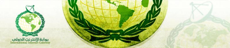 بوابة الإنترنت الدولي