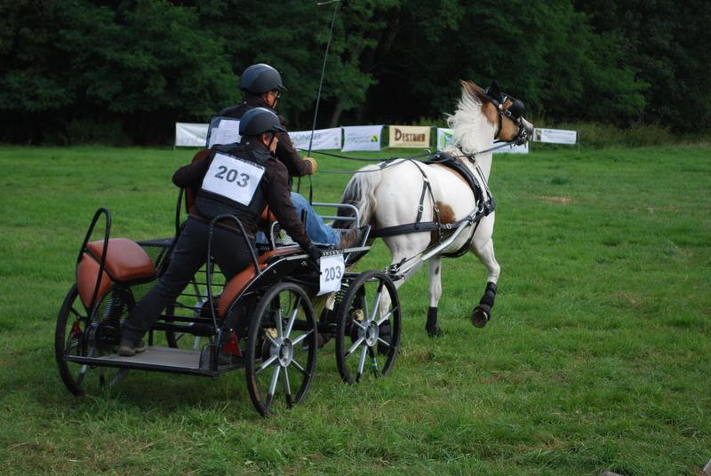 Championnats de France de T.R.E.C. en attelage à Gionges (51 Marne - Champagne) du 19 au 21 août 2016 - Page 2 Dsc_0061