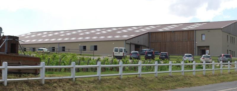 Championnats de France de T.R.E.C. en attelage à Gionges (51 Marne - Champagne) du 19 au 21 août 2016 Dsc_0106