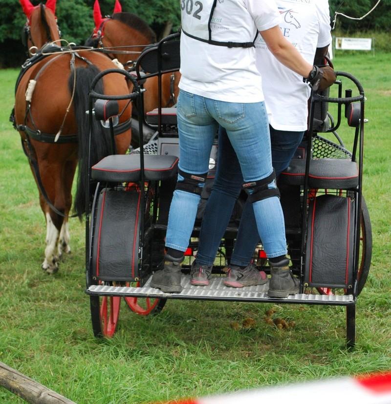 Championnats de France de T.R.E.C. en attelage à Gionges (51 Marne - Champagne) du 19 au 21 août 2016 - Page 2 Dsc_0130