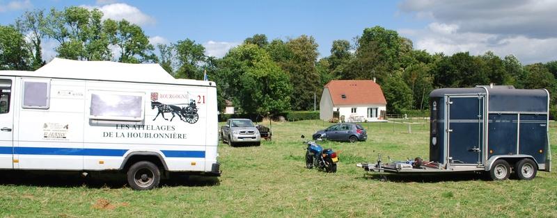 Championnats de France de T.R.E.C. en attelage à Gionges (51 Marne - Champagne) du 19 au 21 août 2016 Dsc_0131