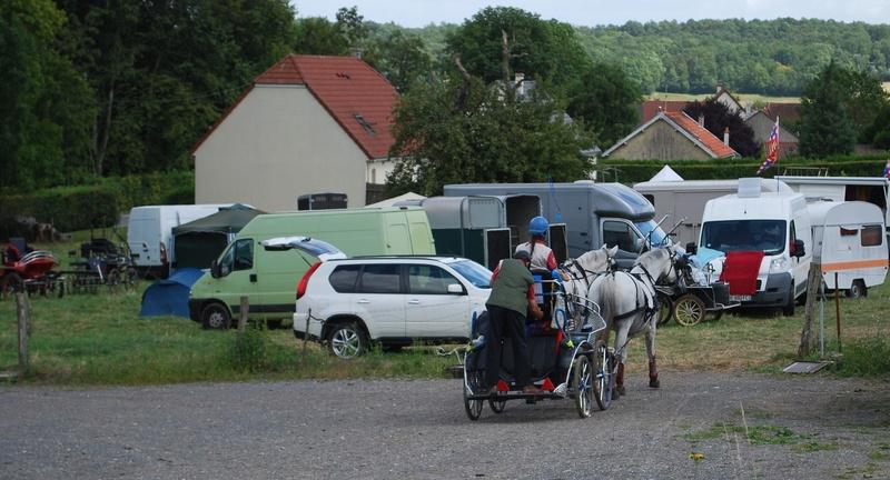 Championnats de France de T.R.E.C. en attelage à Gionges (51 Marne - Champagne) du 19 au 21 août 2016 Dsc_0139