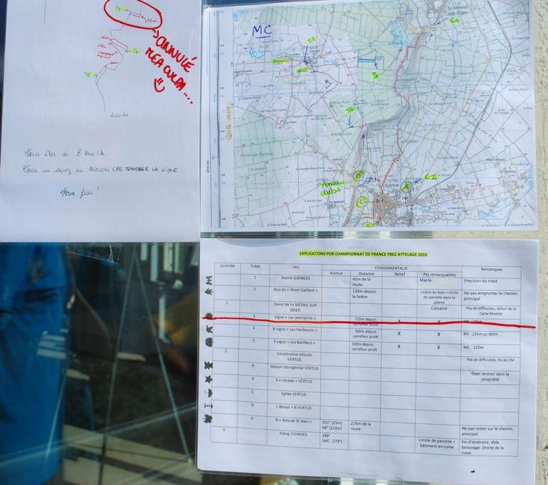 Championnats de France de T.R.E.C. en attelage à Gionges (51 Marne - Champagne) du 19 au 21 août 2016 Dsc_0168