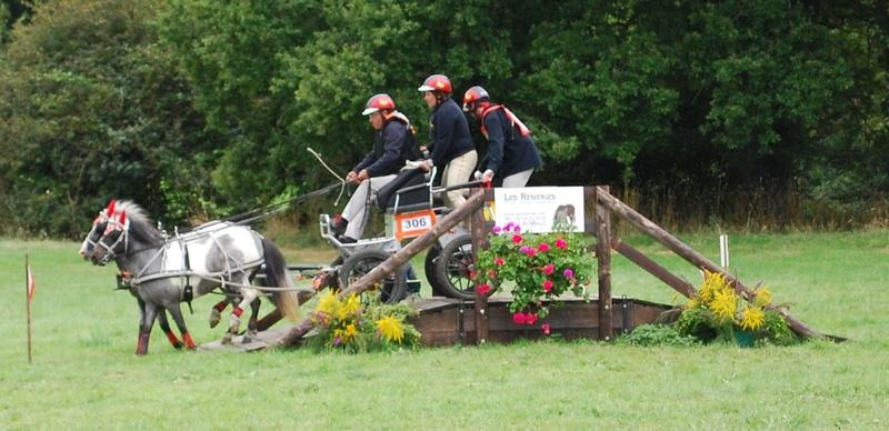 Championnats de France de T.R.E.C. en attelage à Gionges (51 Marne - Champagne) du 19 au 21 août 2016 - Page 2 Dsc_0179