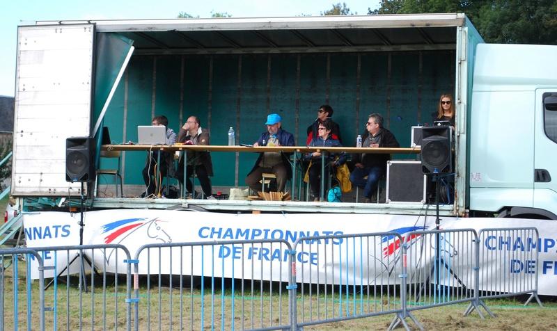 Championnats de France de T.R.E.C. en attelage à Gionges (51 Marne - Champagne) du 19 au 21 août 2016 Dsc_0208
