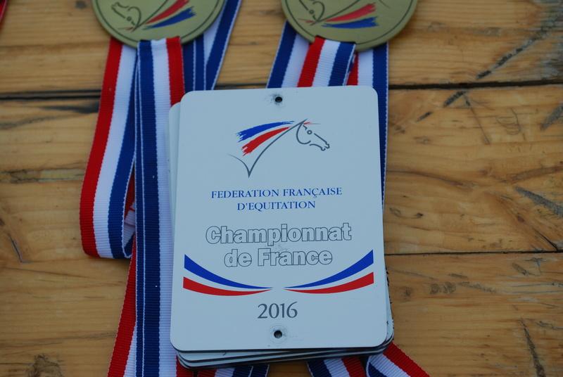 Championnats de France de T.R.E.C. en attelage à Gionges (51 Marne - Champagne) du 19 au 21 août 2016 - Page 3 Dsc_0249