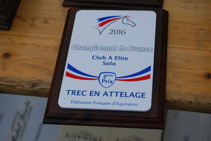 Championnats de France de T.R.E.C. en attelage à Gionges (51 Marne - Champagne) du 19 au 21 août 2016 - Page 3 Dsc_0252