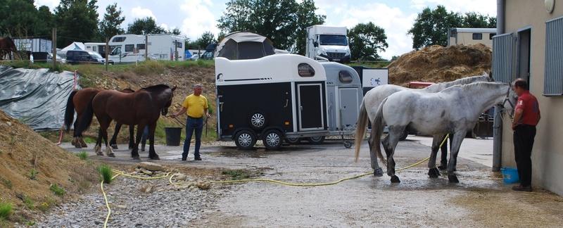 Championnats de France de T.R.E.C. en attelage à Gionges (51 Marne - Champagne) du 19 au 21 août 2016 Dsc_0301