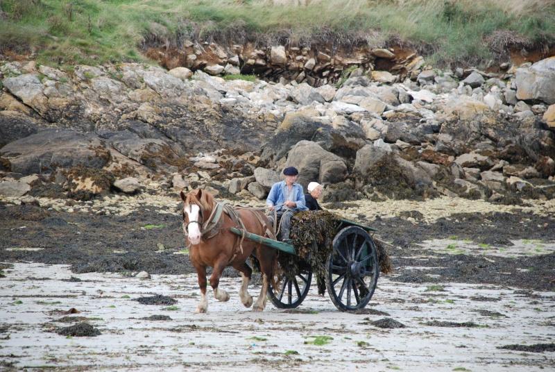 Kezeg ar mor (Les chevaux de la mer) Goem_021