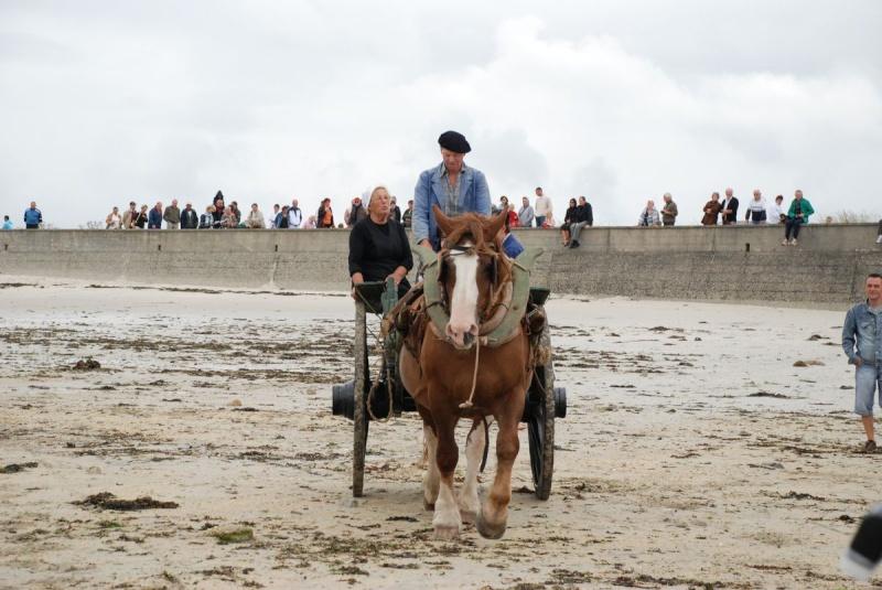 Kezeg ar mor (Les chevaux de la mer) Goem_029