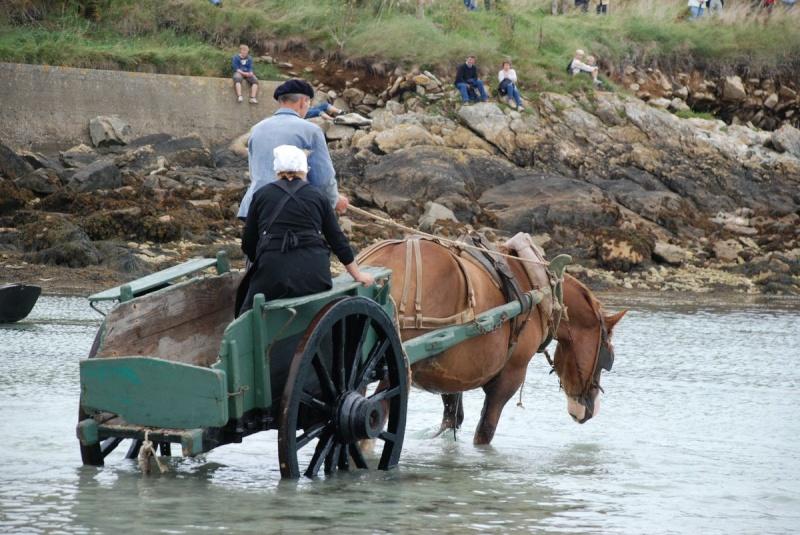 Kezeg ar mor (Les chevaux de la mer) Goem_031