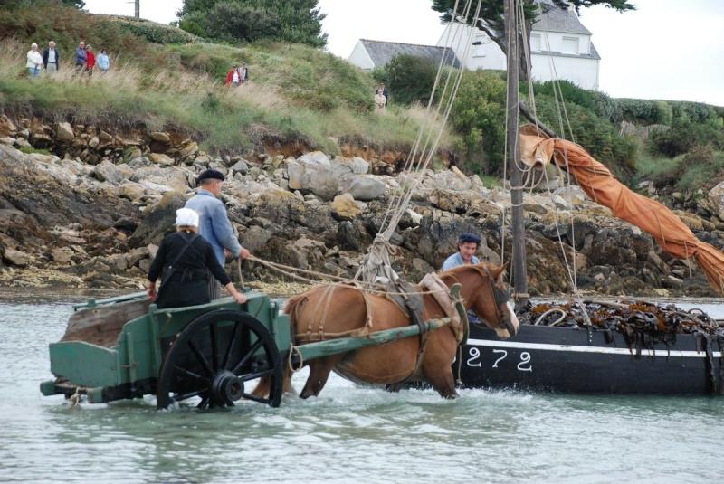 Kezeg ar mor (Les chevaux de la mer) Goem_032