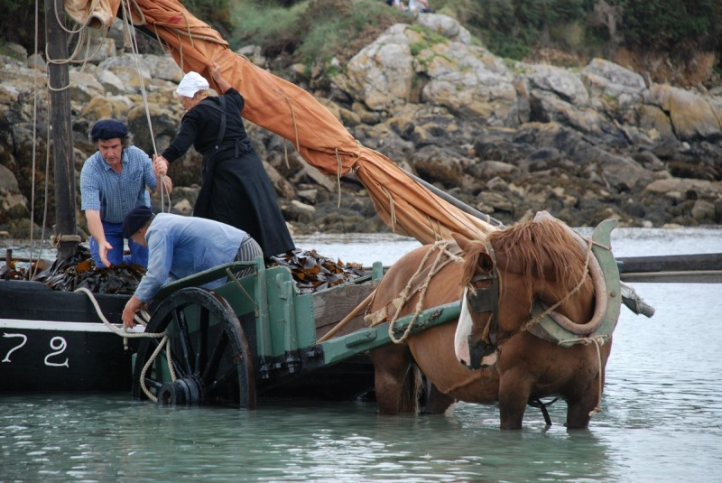 Kezeg ar mor (Les chevaux de la mer) Goem_034