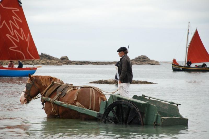 Kezeg ar mor (Les chevaux de la mer) Goem_039