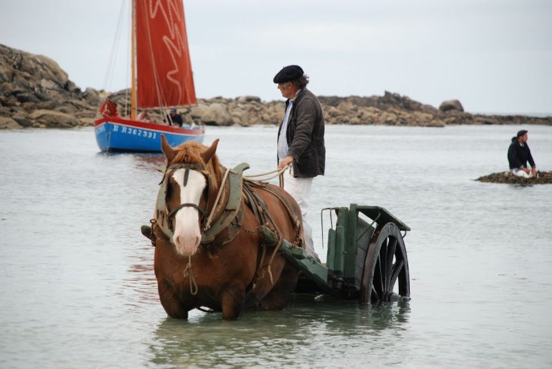 Kezeg ar mor (Les chevaux de la mer) Goem_040