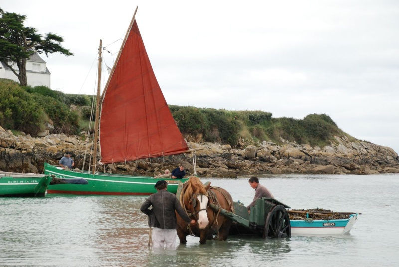 Kezeg ar mor (Les chevaux de la mer) Goem_043