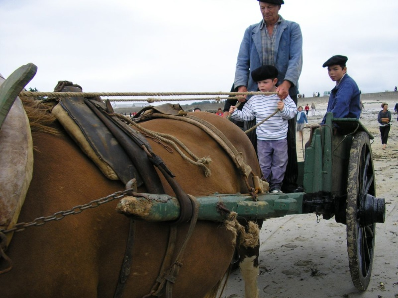 Kezeg ar mor (Les chevaux de la mer) Goem_610