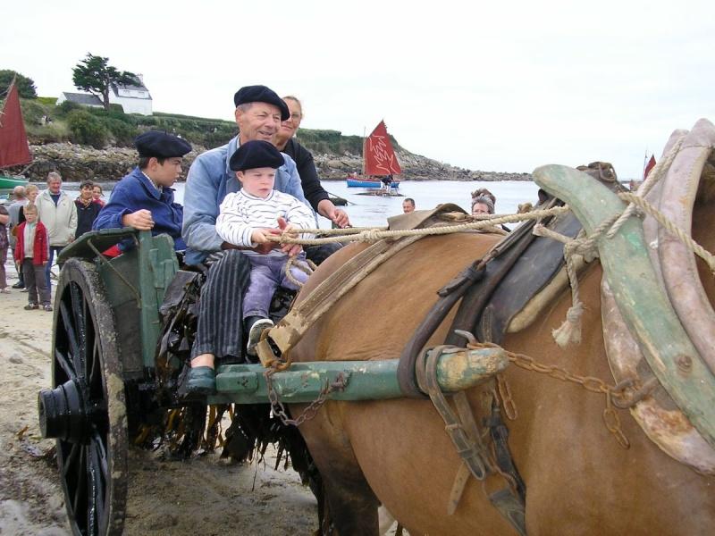 Kezeg ar mor (Les chevaux de la mer) Goem_713