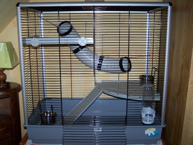 Vends cage Jenny KD [58 / 37]  000_0310