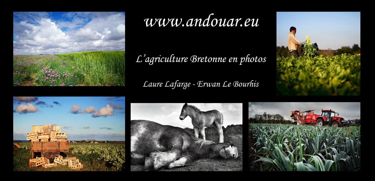 Andouar - l'agriculture Bretonne Carte_11