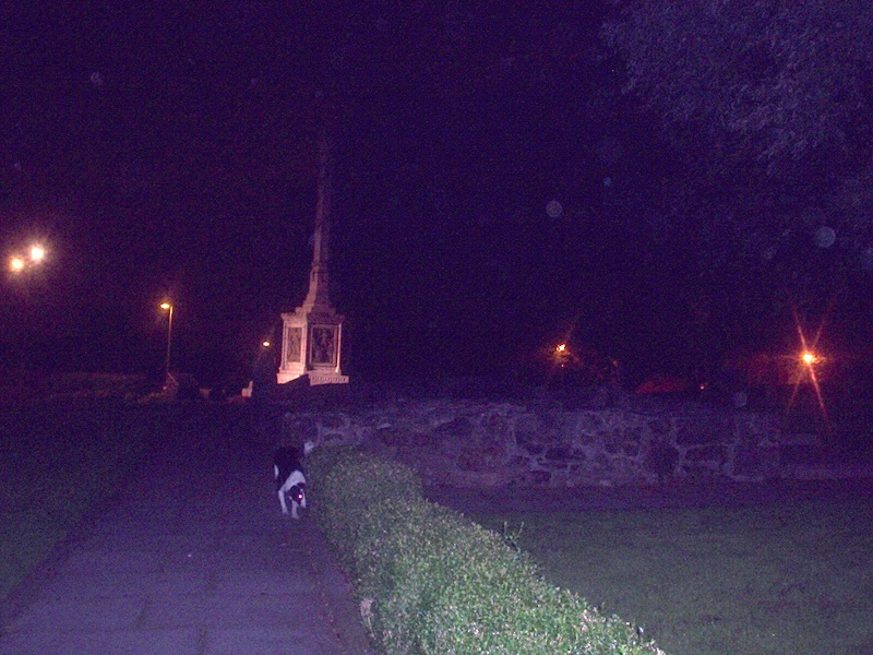Orbs At the home of William Wallace Tshirt14