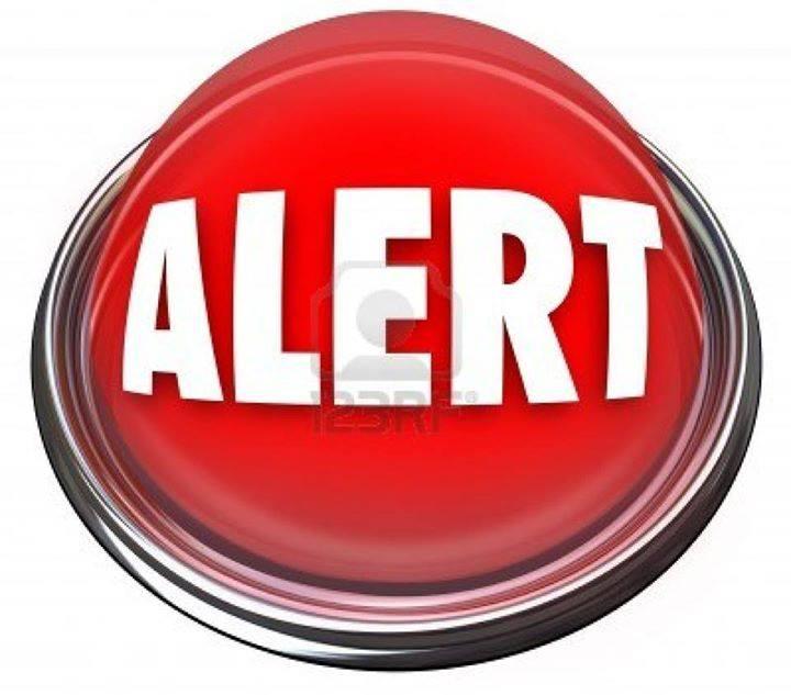 Appel aux dons pour payer les frais de pension pour  Néro,et Doug 10400010