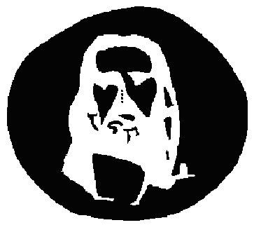 Opticke Iluzije Jesus-10