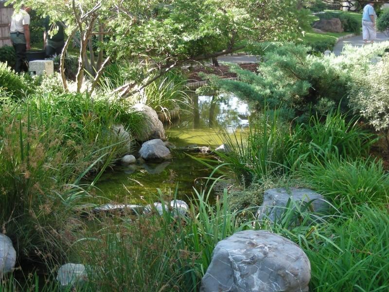 Jardin Japonais de Monaco, ça vous branche ? - Page 2 1_2610
