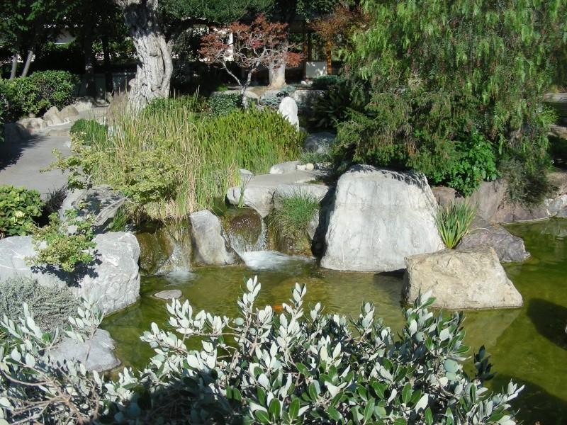 Jardin Japonais de Monaco, ça vous branche ? - Page 3 1_3711