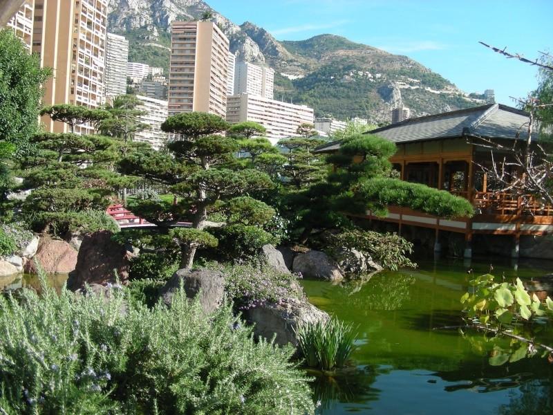 Jardin Japonais de Monaco, ça vous branche ? - Page 3 1_3810