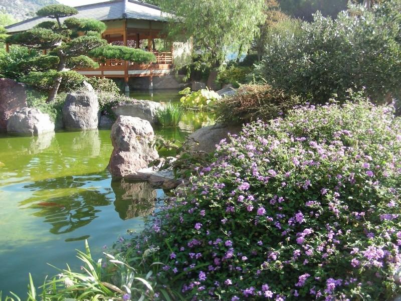 Jardin Japonais de Monaco, ça vous branche ? - Page 3 1_3910