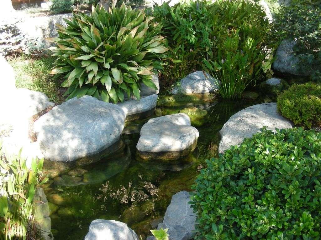 Jardin Japonais de Monaco, ça vous branche ? - Page 2 1_4210