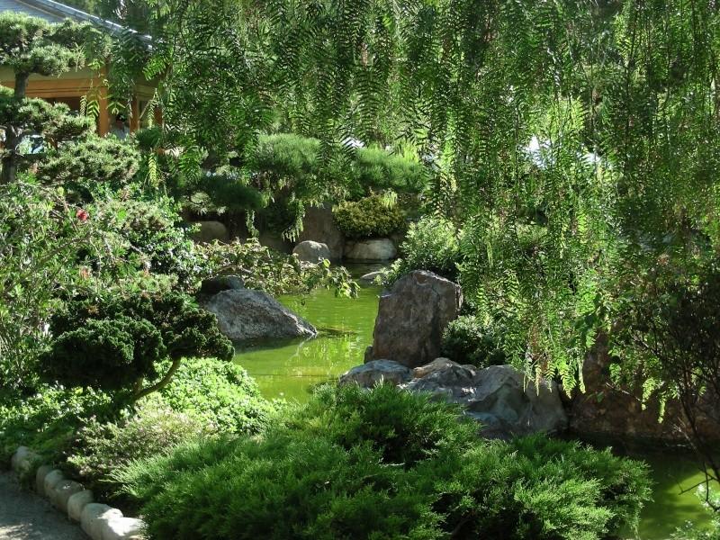 Jardin Japonais de Monaco, ça vous branche ? - Page 3 1_4910