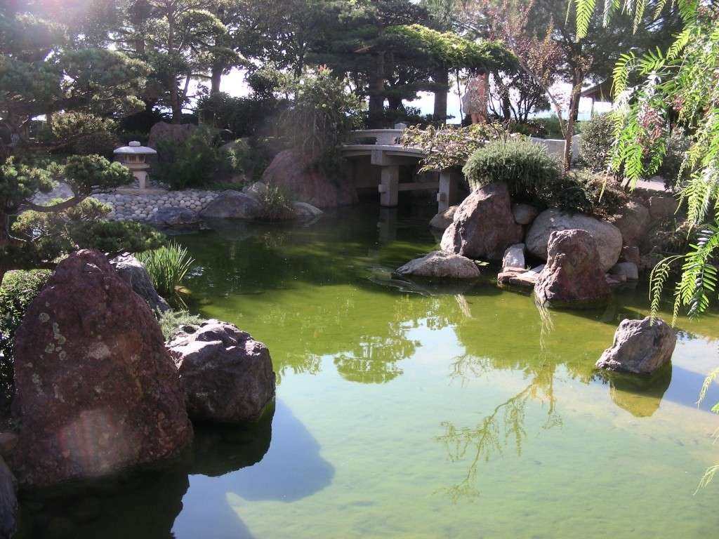 Jardin Japonais de Monaco, ça vous branche ? - Page 2 1_5110