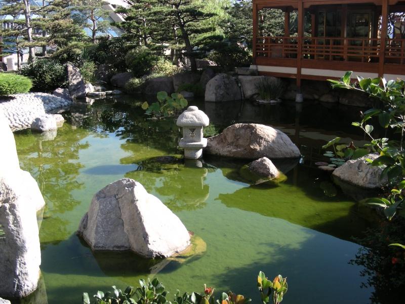 Jardin Japonais de Monaco, ça vous branche ? - Page 3 1_5310