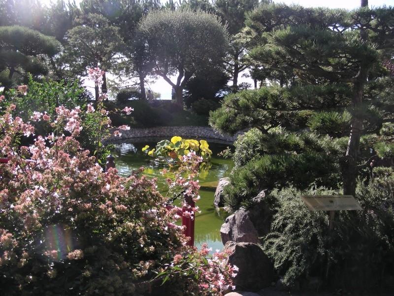 Jardin Japonais de Monaco, ça vous branche ? - Page 2 1_5410
