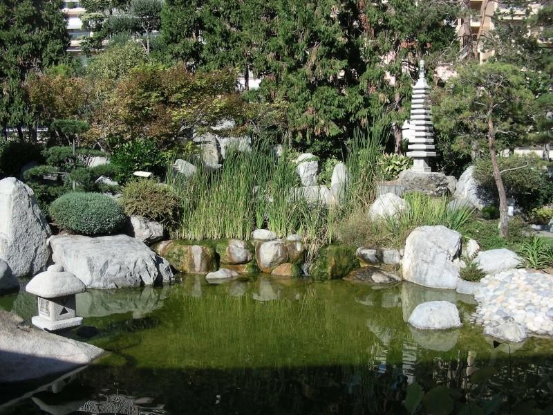 Jardin Japonais de Monaco, ça vous branche ? - Page 3 1_6110