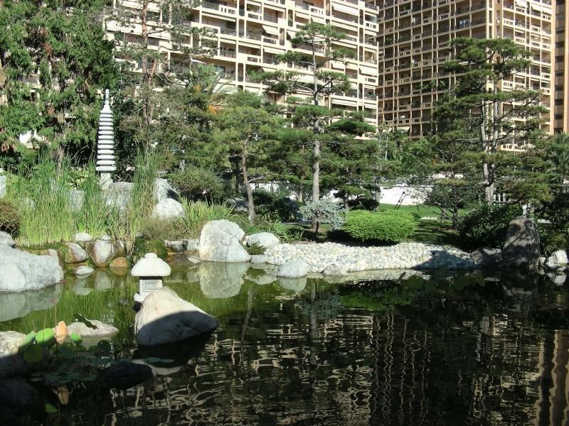 Jardin Japonais de Monaco, ça vous branche ? - Page 3 1_6210