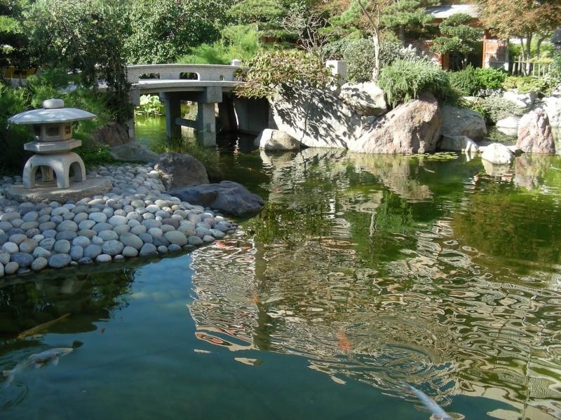 Jardin Japonais de Monaco, ça vous branche ? - Page 3 1_7410