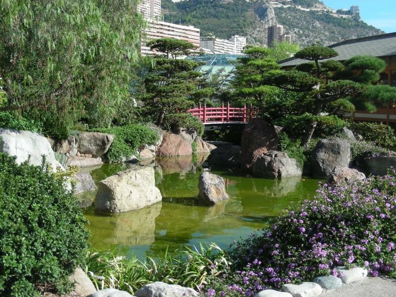 Jardin Japonais de Monaco, ça vous branche ? - Page 2 1_8810