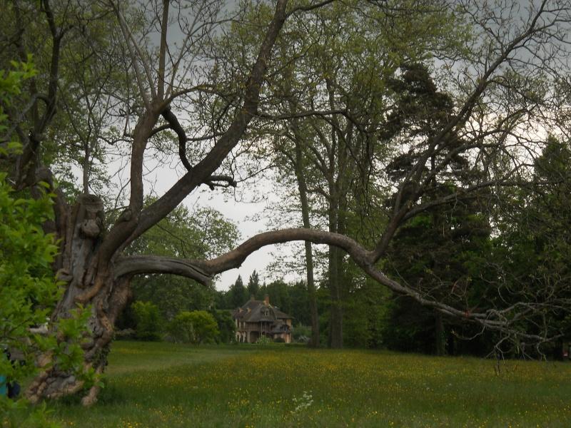 Les jardins du Petit Trianon Carnav10