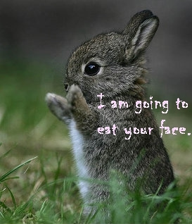 Heres some cute/awesome pics to brighten your day! ^_^ Bunny12