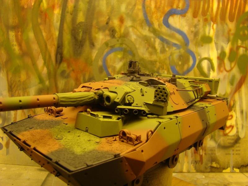 AMX 10 RCR - Version afghanistan -  - Page 2 Dsc05414